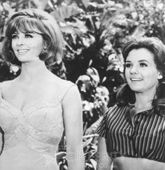 Ginger and Maryann