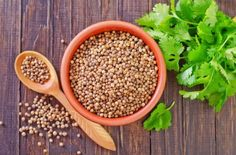 Coriander  Although they found no significant side effects from eating coriander in the right quantities, it is important to note that its essential oil is contraindicated in the following cases: Pregnant women Lactating women People suffering from anxiety or insomnia Children under 6 years