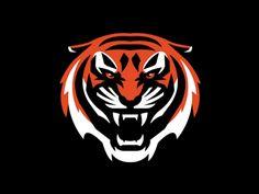 Tiger by Slavo Kiss