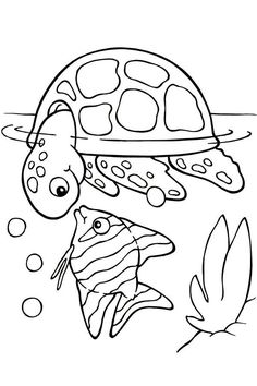 free printable turtle coloring pages for kids picture 4 - Coloring Pg