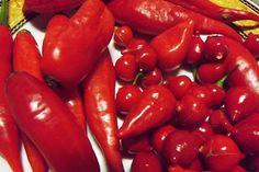 Receitas de Pimenta: Receitas Conservas de Pimenta