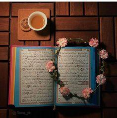 Quran Wallpaper, Online Quran, Quran Recitation, Quran Translation, Learn Quran, Under The Lights, Quran Verses, Islam Quran, Holy Quran