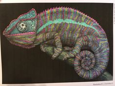 Chameleoen coloured by me drawn by Tim Jeffs from his book Intricate Ink Animals in Detail