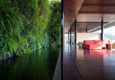 A reflecting pool meets a green wall meets a large expanses of glass.