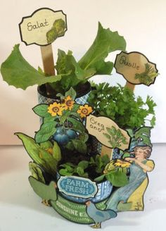 annes papercreations: How to make seed pots using Toilet paper roll - video tutorial