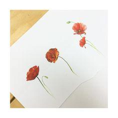: poppy design . . . #tattooistbanul #tattoo #tattooing #design #poppy #flower #flowertattoo #tattoomagazine #tattooartist #tattoostagram #tattooart #inkstinctsubmission #tattooinkspiration #타투이스트바늘 #타투 #양귀비 #꽃타투 #꽃