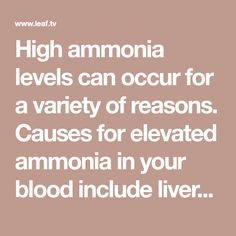 High ammonia levels can occur for a variety of reasons. Causes for elevated ammonia in your blood include liver disease, liver failure, hepatitis, liver cirrhosis, Reye's...