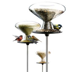 Feed the birds and bring new wildlife to your backyard with our modern designed bird feeders. Shop an elegant collection of bird feeders at Eva Solo! Contemporary Bird Feeders, Modern Bird Feeders, Design Shop, Bird Feeding Table, Feeding Birds, Bird Tables, Hanging Bird Feeders, Bird Boxes, Glass Birds