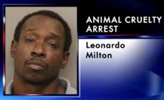 Stiff jail term for Georgia man that tossed dog out of hotel balcony! | YouSignAnimals.org