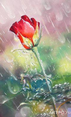 Логинова Светлана. Роза в дожде