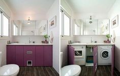 CREATIVE SOLUTIONS TO LIVING WITH A KITTY LITTER BOX — Laura Quattro
