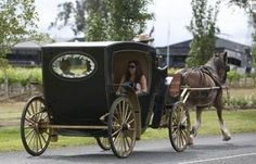 Hunter Valley Horse Riding & Carriage Tours   Hunter Valley Wine Country Tourism. Location: 917 Hermitage Road, Pokolbin NSW 2320, Australia Phone: 0431 337 367 Email: hvhorseriding@yahoo.com.au