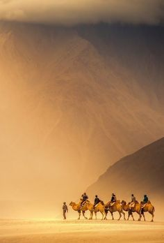 Beautiful Photos of the World, Nubra Valley, Ladakh, India Desert Dunes, Desert Sahara, Travel Quotes Wanderlust, Places To Travel, Places To See, Travel Destinations, Ladakh India, India India, Rajasthan India