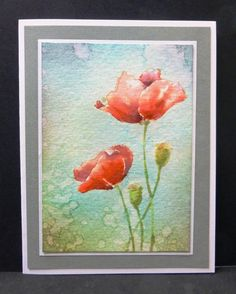 **CC553 Poppies by hobbydujour - Cards and Paper Crafts at Splitcoaststampers