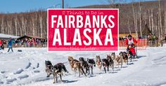 Fairbanks Alaska is incredible. It's not just the Northern Lights, here are a few more things you can't miss during your trip to this winter wonderland...