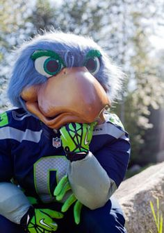 seattle seahawks mascot - Google Search