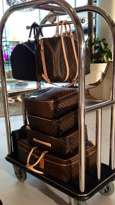 Louis Vuitton Luggage (this will so be me when I travel)