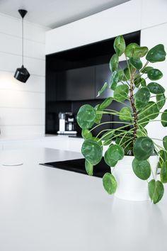 Modern log house interior - black and white kitchen - Scandinavian home interior