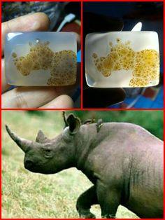 Pic Agate. rhino's pic in agate