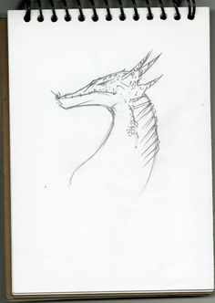 dragon sketch i made this after watch how to train your dragon, really like dragons
