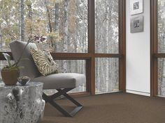 Carpet Port Edwards - EA027 - Winchester - Flooring by Shaw