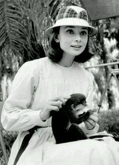 奥黛丽赫本 Audrey Hepburn