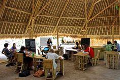 bamboo-green-school-1 Por uma boa educação