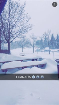 Image shared by ♡Nyra♡. Find images and videos about winter, snow and cold on We Heart It - the app to get lost in what you love. O Canada, Image Sharing, Find Image, We Heart It, Snow, Birthday, Birthdays, Dirt Bike Birthday, Eyes