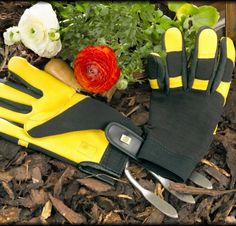 Gold Leaf Soft Touch Gloves are packed full of features as you'd expect from Gold Leaf and are arguably the most comfortable and luxurious gardening gloves on the market today, used by both professional and amateur gardeners. Lawn And Garden, Garden Tools, Ladies Gents, Gardening Gloves, New Hair Colors, Gold Leaf, Suits For Women, Leather, Stuff To Buy