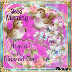 Good Morning, Have A Blessed Day morning good morning morning quotes good morning quotes good morning gifs good morning greetings Morning Morning, Good Morning Gif, Good Morning Flowers, Good Morning Messages, Good Morning Greetings, Good Morning Wishes, Gif Greetings, Cute Good Morning Images, Good Night Image