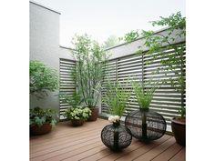 ミサワホーム「ルーフバルコニーの観葉植物」