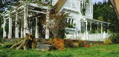 Garden and arbor of the house from the movie Practical Magic.