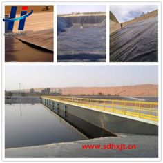 geomembrane type and hdpe material waterproof plastic dam liner