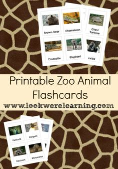 Printable Zoo Animal Flashcards from www.lookwerelearning.com - Great for planning a field trip to the zoo!