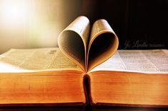 Book Heart @jo_lindhe_photography