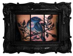Si tratta di un Blue Bird ho fatto il mio amico e cliente fedele.  Il tatuaggio è così grande che avvolge il suo braccio così ho dovuto fare quello che ho potuto mettere le foto insieme ad includere il tatuaggio intero.  Non abbiamo parlato troppo del significato, ma è in Marina, quindi sono sicuro al 99% ha a che fare con il tornare a casa dopo il suo lungo viaggio in Giappone.  E 'stato un colpo da fare!  Fatto di Fear Thea a Saints & Sinners tatuaggio a Garden Grove, California…