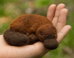 Felted platypus, felt animal, needle felted toy, soft, gift, exotic, Australia, wool creature, soft sculpture, sleeping - pinned by pin4etsy.com