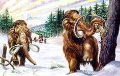 Mammoth-Belch Deficit Caused Prehistoric Cooling?