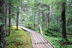 New River Beach walkway, New Brunswick, Canada