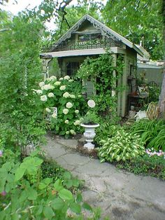 Lovely!  I hope one day to build a garden shed folly half as prettily arranged as this!  Hostas and Hydrangeas... love it!