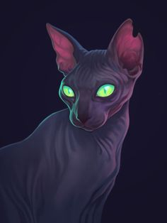 64 Ideas For Tattoo Cat Sphynx Art Prints Kunst Inspo, Art Inspo, Warrior Cats, Art And Illustration, Sphinx Cat, Poses References, Cat Drawing, Animal Drawings, Cat Art
