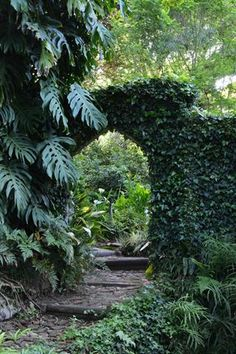 Garden and Home Tropical Design, Potted Plants, Home And Garden, Gardens, Gallery, Floral, Inspiration, Decor, Pot Plants