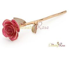 """Here is a stunning natural pink rose that has been preserved, and then glazed & trimmed in pure 24k gold. This style has gold lattice leaves and comes in a superb leather display case. It is an exquisite gift to show someone how much you love them... and will for an eternity! These roses have been purchased worldwide for anniversaries, Valentine's day, other romantic occasions, or simply as a gift for someone's birthday, or anytime when you just want to say """"I love you""""."""