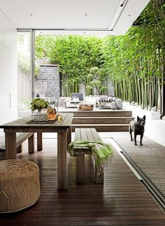 Zen covered patio is filled with a rectangular teak outdoor dining table lined with matching teak benches next to steps which lead to an open zen deck lined with bamboo trees.