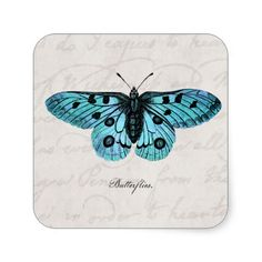 Vintage Teal Blue Butterfly Illustration -�1800's Stickers