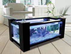Wooden glass table with great aquarium