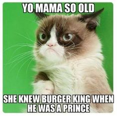 Oh grumpy cat Funny Cat Quotes # … - Funny Animals Grumpy Cat Quotes, Funny Grumpy Cat Memes, Funny Cats, Funny Memes, Cats Humor, Hilarious, Funny Tweets, Angry Cat Memes, Funny Minion