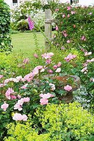 Garden....cottage style