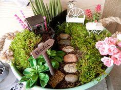 Life Unexpected: No Maintenance Fairy Garden DIY