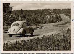 #volkswagen #aircooled #beetle